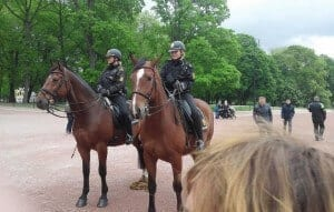 Mounted police (2)